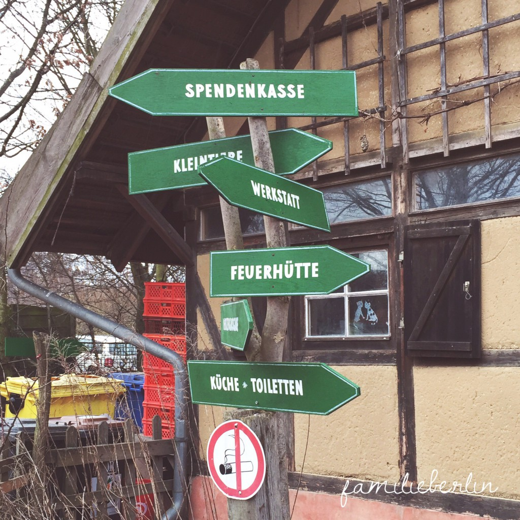 Bauernhof, Kinder, Ausflug, Berlin, Kinderbauernhof Pinke Panke, Bauernhof, Tiere, Berlin, Erlebnis, Berlin mit KInd, Ausflug