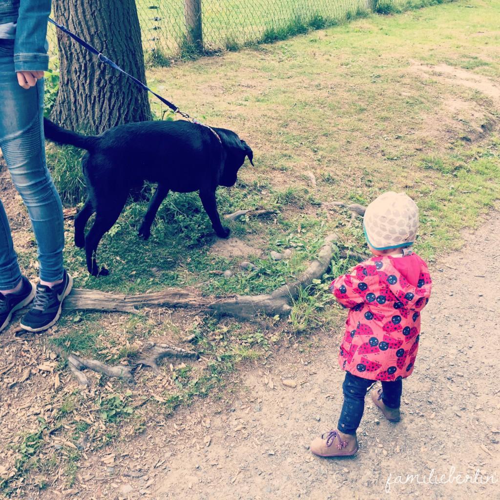 Wochenende in Bildern, Tierisch, Tiere und Kleinkind, Leben mit Kind, Spaß, Familienleben, Zeit mit Kind, Baby