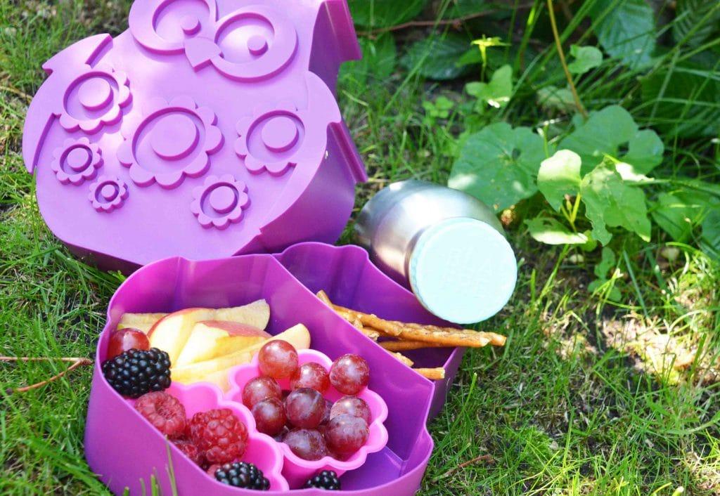 Picknick mit Kindern, BlaFre, Affenzahn, Rezepte, Nachhaltig, Abenteuer, Waldspaziergang, Lifefactory, Aufbewahrung, Unterwegs mit Kind