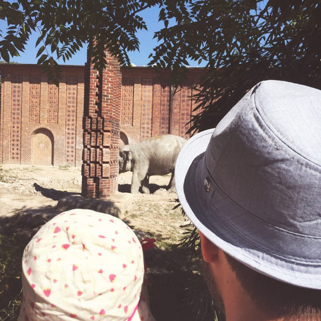 Leipzig mit Kindern, Zoo, Cospudener See, Sachsen, Familienausflug, Sommer, Wochenende in Bildern, Baby, Kleinkind, Urlaub in Leipzig