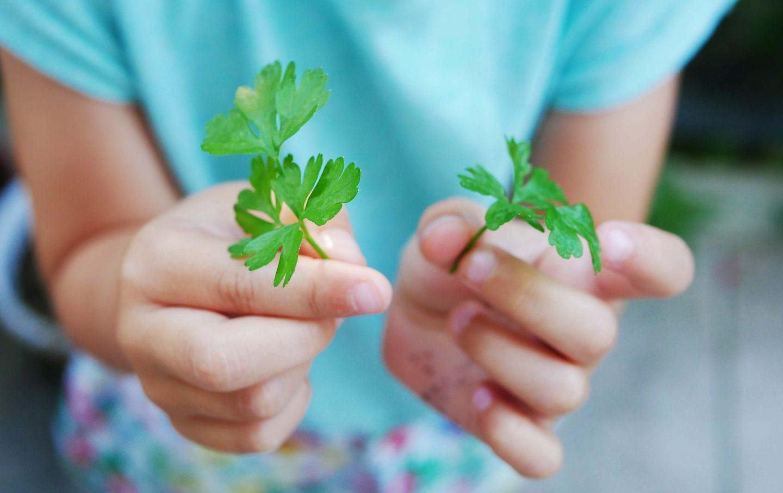 Garten mit Kindern: 5 Tipps, um die Kleinen zu motivieren